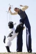 Stelzenläufer mit Marionette